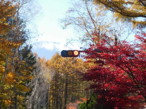 17. 赤信号・紅葉・富士 場所:山中湖 みどり:赤間 廣